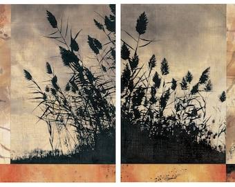 "Silhouette Grasses Set  2 /11x14""s"