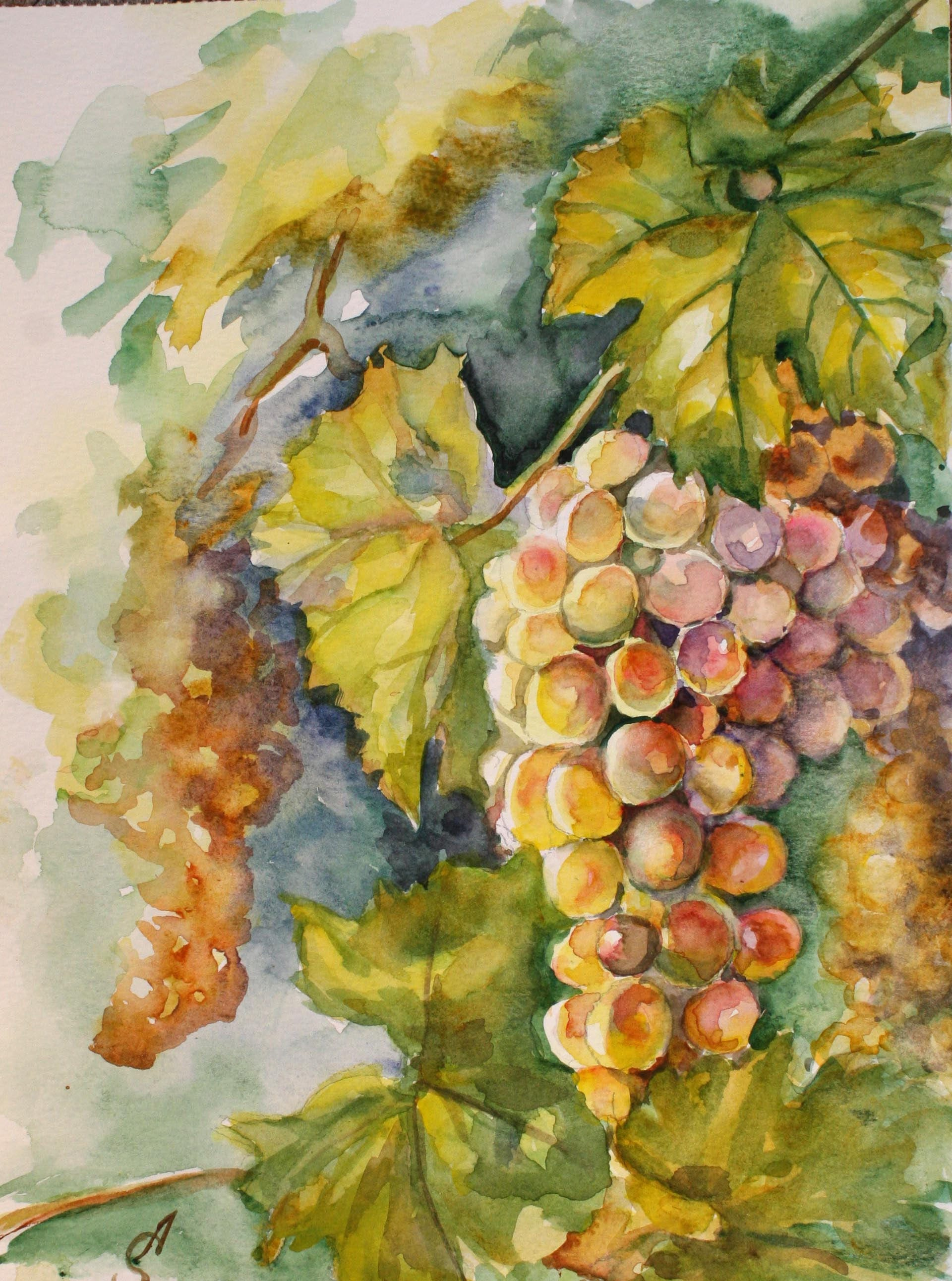 Grapes Original painting watercolor fall fruits nature