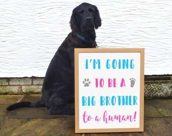Im Going to Be a Big Brother Dog Announcement, Baby Announcement Dog Big Brother Sign for Dog Pregnancy Announcement Grandparents, UNFRAMED