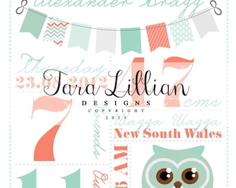 Baby Boy Owl Birth Print FILE ONLY