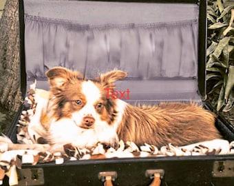 custom made dog and cat beds