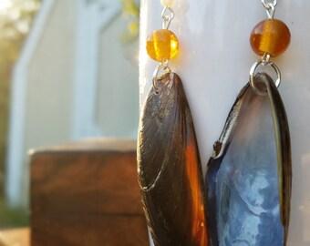 Sea Shell Dangle Earrings Orange