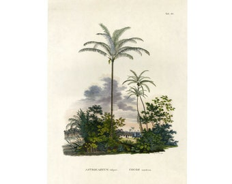 Palm Tree Island Landscape Print SALE Buy 3, get 1 FREE (Large for Framing)