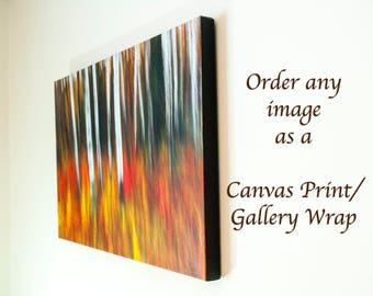 Fine Art Canvas Prints, Gallery Wraps, Nature Photography, Panorama Print, Custom Size, Healing Art, Landscapes, Wall Art, Home Office Decor