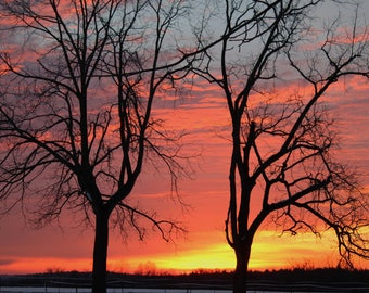 Winter Sunrise 5