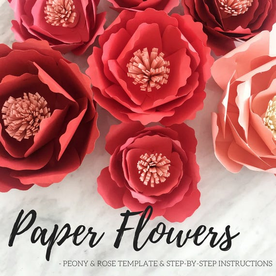 Paper flower template paper peony giant paper flower paper paper flower template paper peony giant paper flower paper flower backdrop large paper flower rose template flower template from accentvault on mightylinksfo