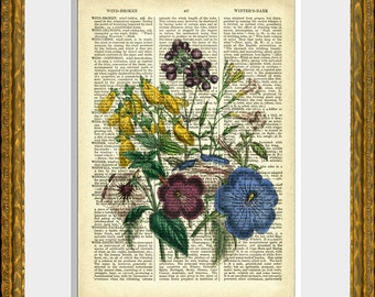 Floral Dictionary Page Art - FLOWER BOUQUET 8 - an upcycled antique 1800's dictionary page with an antique flower illustration - wall art