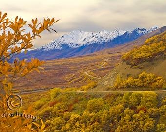 Alaska Photography, Danali National Park, Landscape Photography, Nature Photography,  Glaciers Alaska, Hiking Alaska, Mountain View,