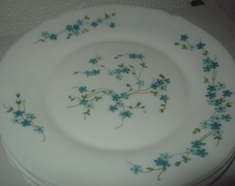 6 plates arcopal french vintage forget-me-not