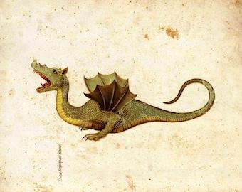 Mediaeval picture of a dragon - draco aethiopticus or Ethiopian Dragon