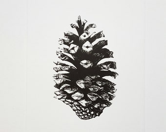 Letterpress poster 'Pinecone'