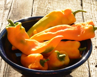 Sweet Pepper Seeds Heirloom Pepper Seeds Golden Treasure Heirloom Pepper Organically Grown Pepper Seeds Great For Stuffing or Salads