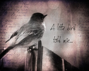 A Little Bird Told Me - Note Card 10-pack