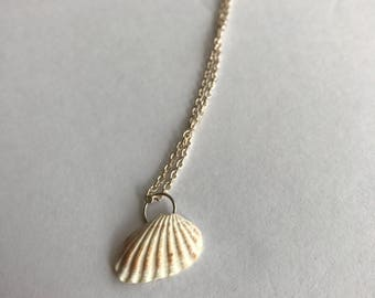 Broad Ripple Cardita Shell Necklace