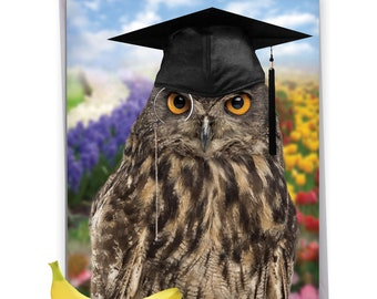 J4630GT Jumbo Funny Blank Graduation Thank You Card: Wise Old Owl, with Envelope