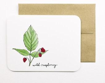 Wild raspberries card with envelope | Raspberry | Wild berry | Wild raspberry | Greeting card | Forage | Pantry