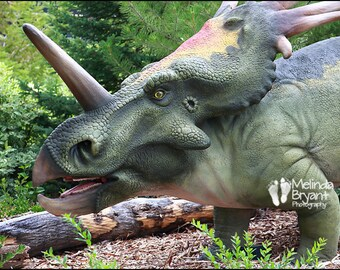 "Dinosaur Wall Decor --  Styracosaurus 12x18"""
