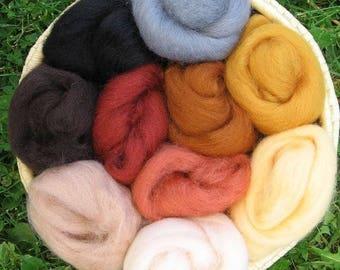 Corriedale Felting Wool - EARTH Colors Pack, 10 colors