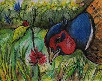 Original pen and watercolour pencils drawing of a pheasant