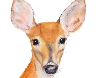 Whitetail Deer Print of Original Watercolor Painting, painting,watercolor,nature, wildlife,animal,art,wall art,drawing,0hio artist