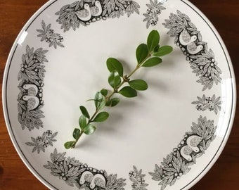 Vintage Franciscan Bird n Hand Dinner Plate