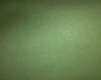 Light Green Fleece Fabric