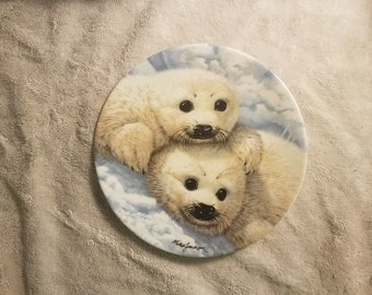 Baby Seals Collectible  Plate