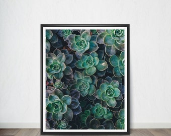 Tropical Leaf Poster, Art Print, Digital Art, Digital Art Print, Digital Artworks, Digital Print Art, Digital Art Download
