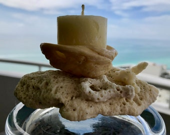 Shell Coral Fossil Tea Light Candle Holder Beach Coastal Wedding Centerpiece Unity Candle Ring Holder Natural Home Decor Candles Brain Coral