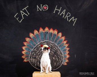 Vegetarian Vegan Dog note card