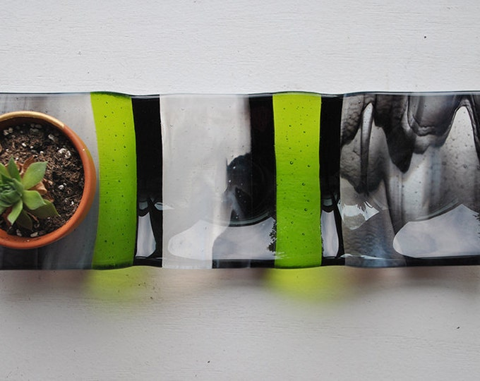 Green/Black Swirl 3-part Fused Glass Dish