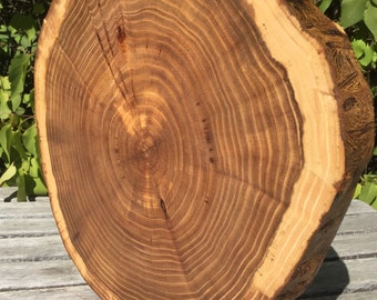 Dark Elm Wood Slab Barkless No Bark  (16-17 In) Rustic Cake Cupcake Stand Wedding party shower wooden
