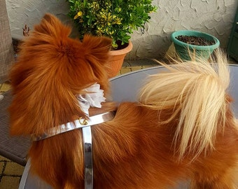 Bespoke dog harness & lead set with chiffon detail  SALE NOW ON!!!!!