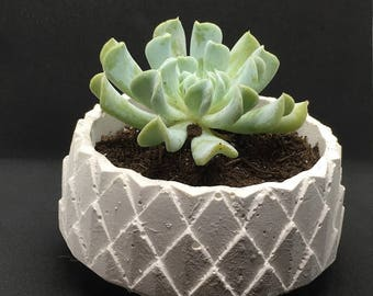 Geometric Plaster Succulent Planter - Stacked Diamonds 5 inch diameter 2.5 inch tall