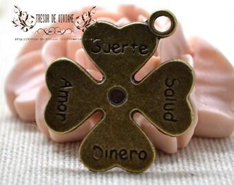 Set of 8 QZW049 charms, Bronze, flowers