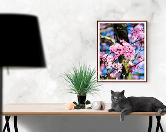 Printable Photograph, Pink Flower Photography, Download Image, Nature Photography, Instant Download Photography,Download Print,Printable Art