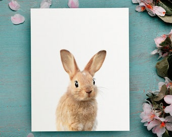 The Crown Prints Shop, Bunny print, Nursery decor, Nursery PRINTABLE art, Rabbit print, Baby room decor, Nursery wall art, Woodland animals