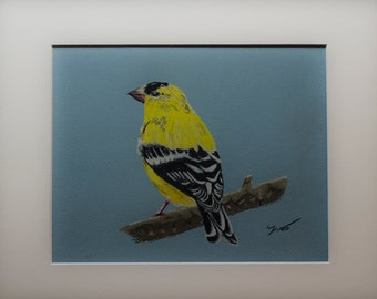 "Gold Finch 9"" X 12"" Pastel on Paper"