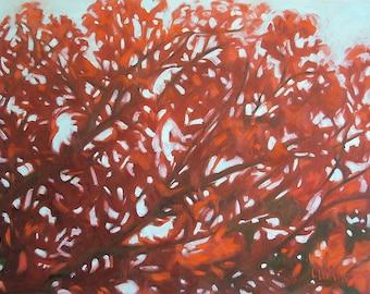 Red Oak Giclee