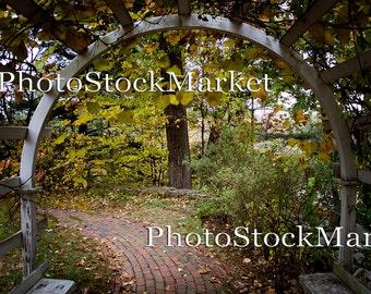 Grape Arbor - Digital Backdrop - Brick Path - Garden trellis - Photography backdrop - Photoshop background