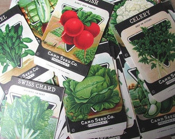 One Seed Packet Vintage Card Seed Co. ONE  Packet NOS EMPTY Packet Junk Journal Supply