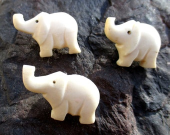Three African hand-carved elephant buttons in bone, 1950s