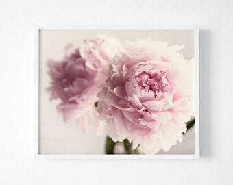 Peony Photography, Botanical Fine Art Photograph, Peony Flower, Large Wall Art, Home Decor