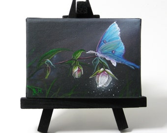 2.5x3.5 Luna Moth Fairy Lantern Giclee PRINT on mini Canvas Frame by J. Mandrick