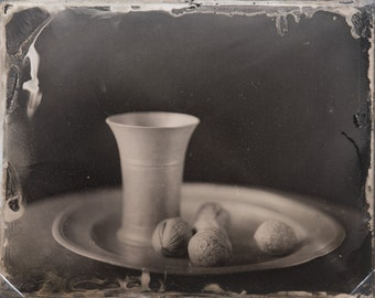 walnuts wetplate  tintype