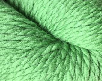 Peppermint Green Cascade 128 Bulky Superwash Yarn 128 yards 100% SuperWash Wool color 234