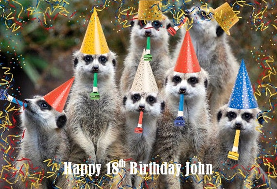Unique Personalised Meerkat Birthday Card 18th 21st 30th 40th