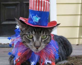 Uncle Sam cat top hat and party collar for cats and dogs