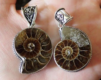 Fossil Ammonite In Sterling Silver Pendant