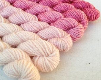 FRESAS 480 yard mini-skein set, High Twist sock, superwash, merino, fingering weight, sock yarn, gradient, ombre